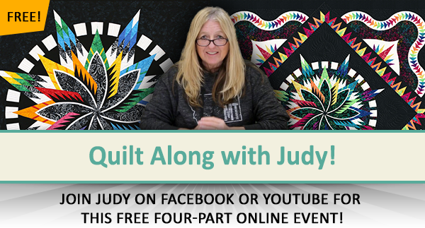 FREE Quilt Along with Judy!